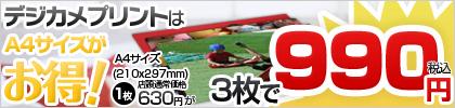 デジカメプリントA4サイズ3枚で990円