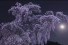 「花月」遠藤康彦(福島県)