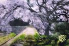 「陽だまり」遠藤康彦(福島県)