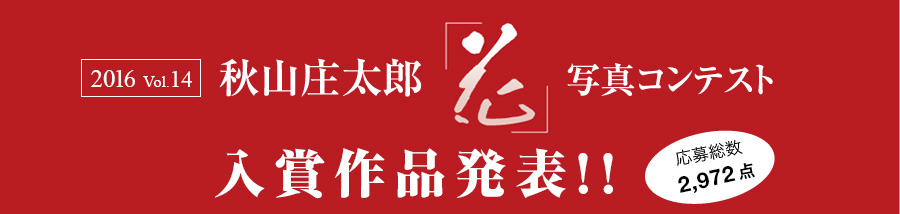 2016 vol.14 秋山庄太郎記念「花」写真コンテスト2016入賞作品発表!! 応募総数約9,191点