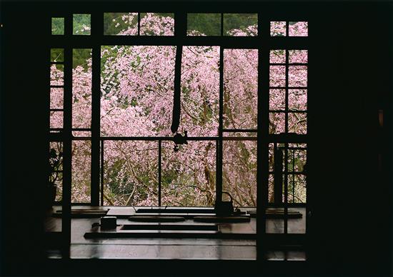 「窓越しの春」宮田元治(岐阜県)