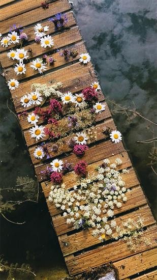 「fleurs posées ―そっと置いた花―」ファビアン・ベサール(沖縄県)